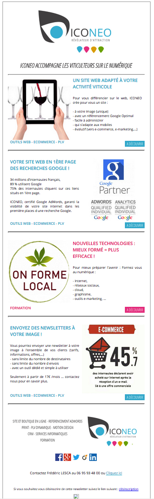 newsletter Iconeo 2